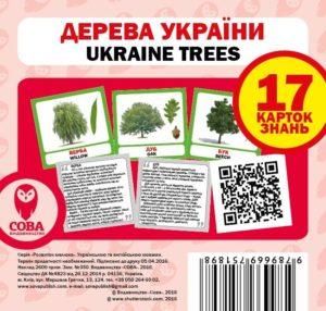 Дерева України